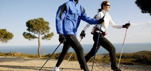 скандинавская ходьба с палками техника ходьбы