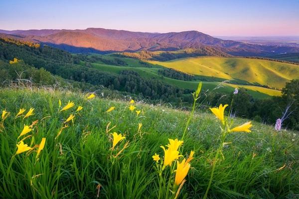 Алтайский край фото природы